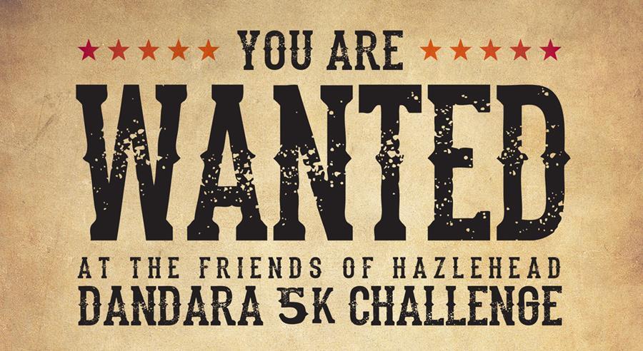 Dandara 5K Challenge
